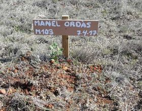 103 – Manel Ordàs