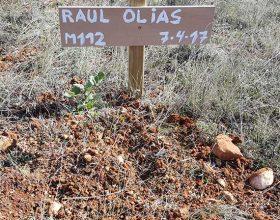 112 – Raul Olías