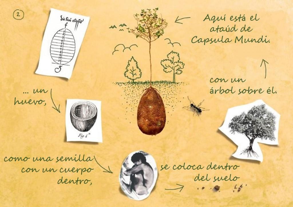 capsula-mundi