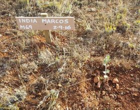 69 – India Marcos