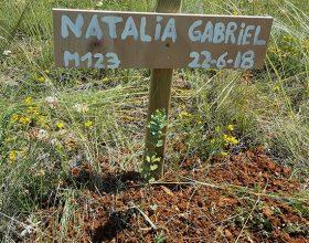 123 – Natalia Gabriel Villalon