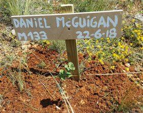 133 – Daniel McGuigan